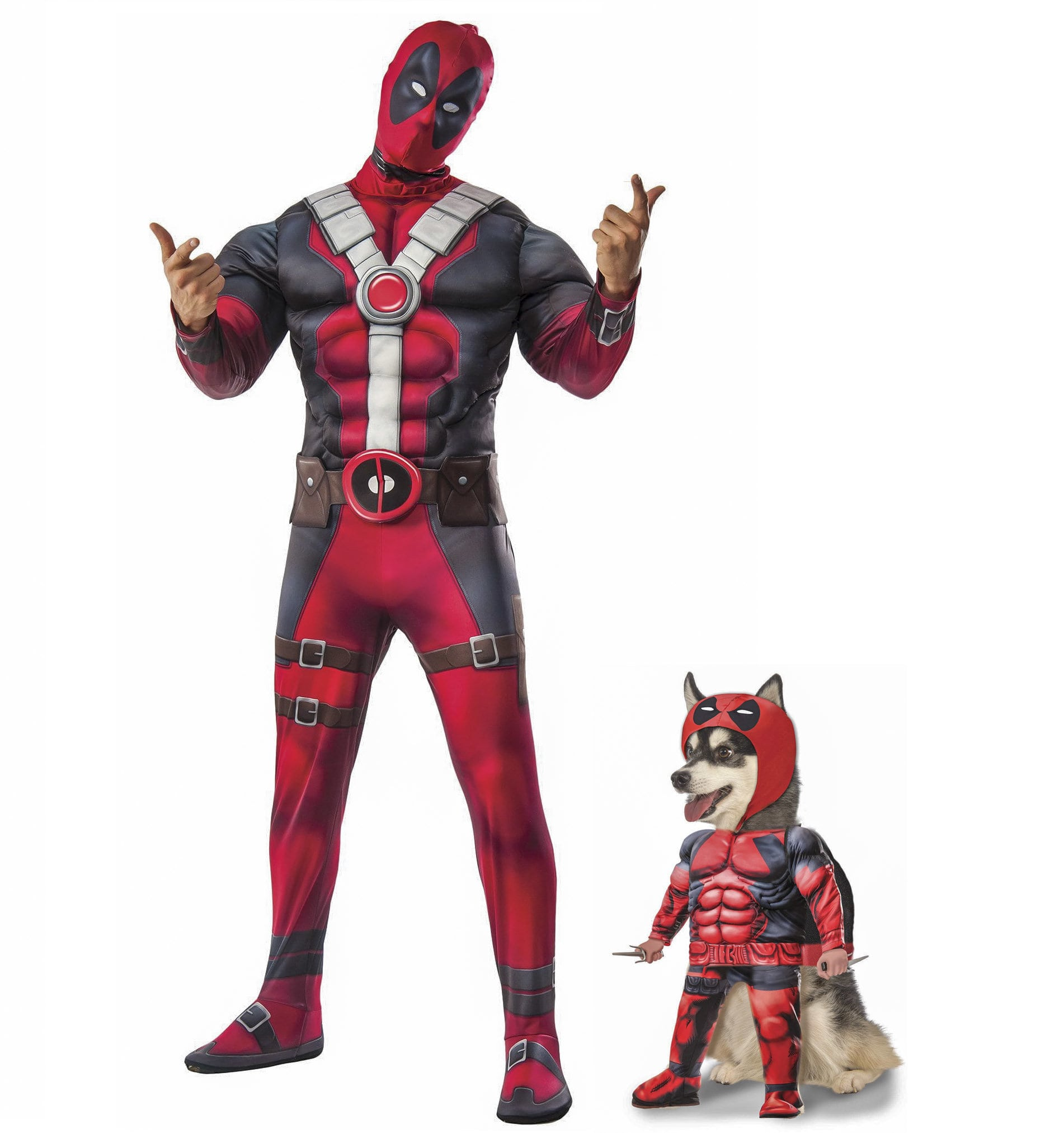 Deadpool and Pet Costume