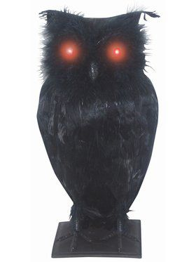 "10"" Light Up Eyes Haunted Owl"