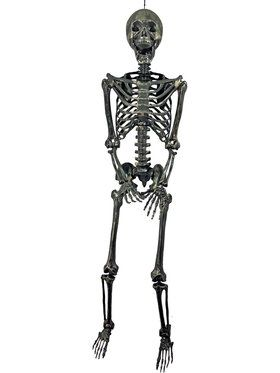 "60"" Gold Skeleton - Posable"