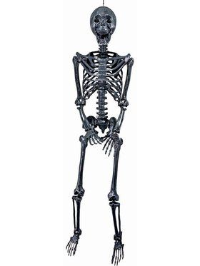 "60"" Silver Skeleton - Posable"