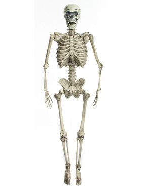 "60"" Skeleton with Lights - Posable"