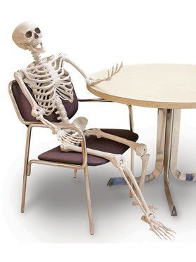 60-inch Skeleton - Posable