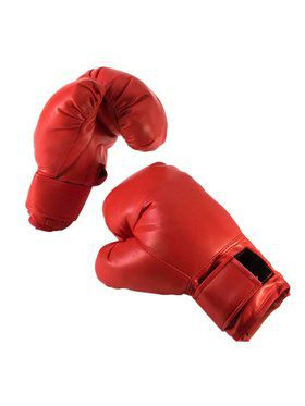 Boxing Gloves - Adult