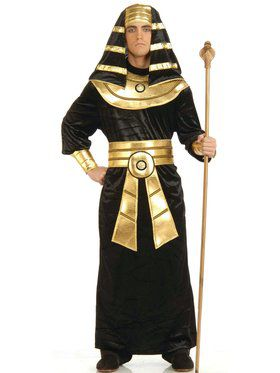 Egyptian Pharaoh - Adult Costume