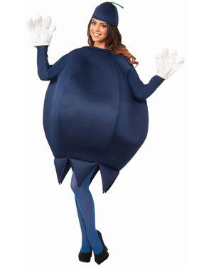 Adult Unisex Deluxe Blueberry Costume