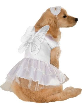 Angel Dog Costume Small
