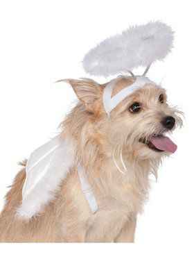 Angel Halo/Wings Set for Pets