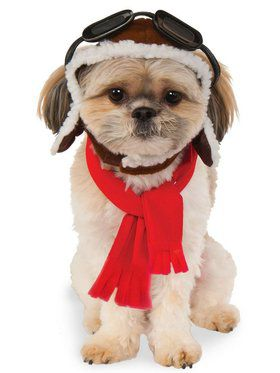 Aviator Hat/Scarf Set Pet Costume