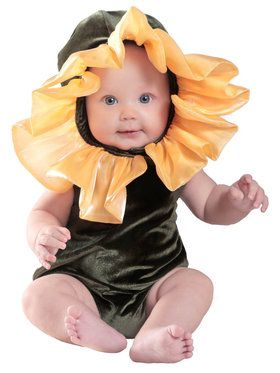 Ann Geddes Infant Flower Baby Costume