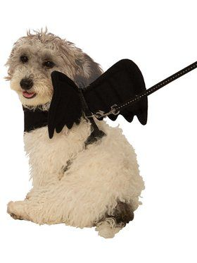 Bat Harness Pet Costume