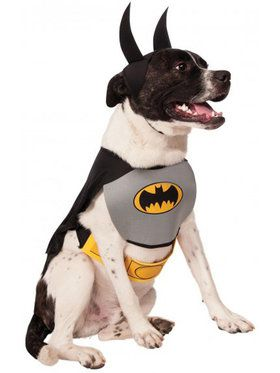 DC Batman Dog Costume