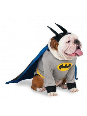 Big Dogs Batman Pet Costume