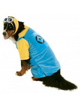 'Big Dogs' Minion Pet Costume