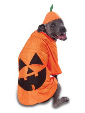 Pumpkin Big Dog's Costume for Pet