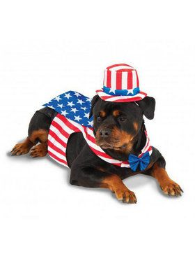 Big Dogs Uncle Sam Pet Costume