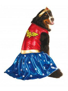 Big Dogs' Wonder Woman Costume For Pets
