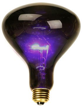 Black Spotlight Bulb (75 Watt)