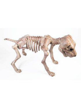 Large Skeleton Dog