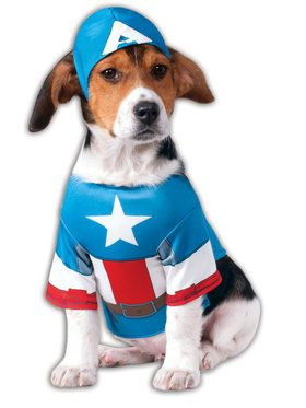 Captain America Pet Costume Ideas