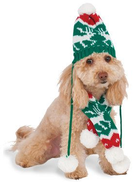Christmas Knit Pom Pom Hat and Scarf Pet Costume Small/Medium