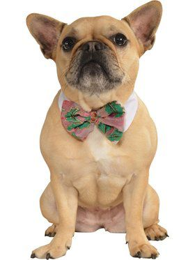 Christmas Pet Bowtie-Pons