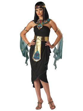 Cleopatra Adult Costume X-Large