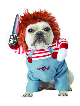 Pet Costumes Pet Halloween Costumes Buycostumescom
