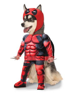 Deadpool Costume for Pets