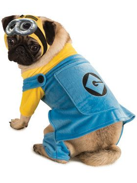 Despicable Me Dog Costume X-Large