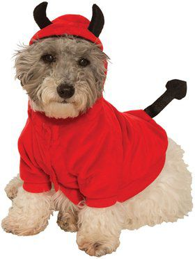 Pet devil hoodie pet costume solutioingenieria Image collections