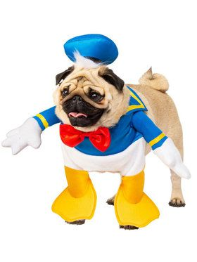 Donald Duck Costume For Pets