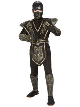 Kids Ninja Dragon Warrior Costume