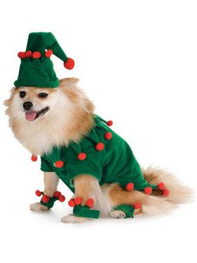 Elf Pet Costume M