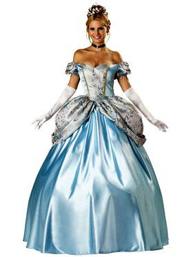 Elite Enchanting Princess Adult Costume