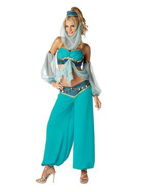 Elite Harems Jewel Adult Costume