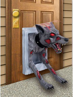 Feral Doggy Door