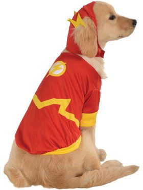 DC Pet Flash Costume