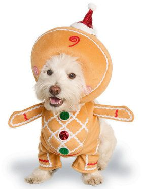 Gingerbread Man Pet Costume