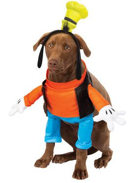 Goofy Costume For Pets