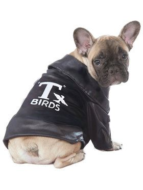 T-Birds Grease Jacket Pet Costume