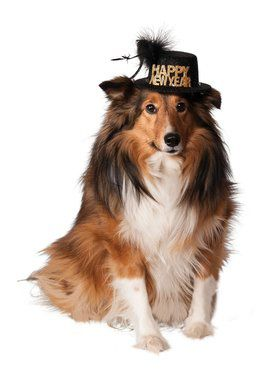 Happy New Year Hat for Pets