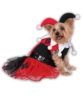 Harley Quinn Pet Costume