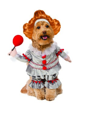 It Pennywise Walking Pet Costume
