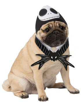 Disney Jack Skellington Pet Costume 2018 Halloween Costume Accessories