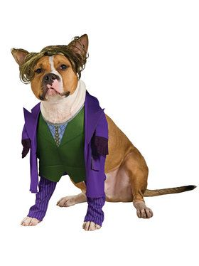 Pet Joker Costume Small