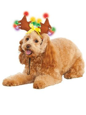 Light Up Reindeer Antlers for Pets