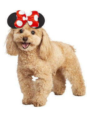 Minnie Mouse Costume For Pets