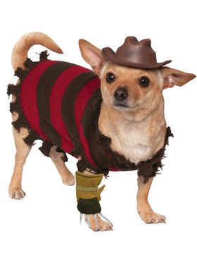 Pet Freddy Kreuger Costume