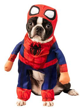 Pet Marvel Walking Spider-Man Costume