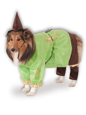 Pet Scarecrow Costume Wizard of Oz